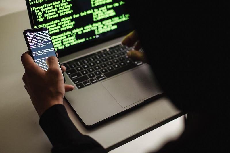 Your Web Scraping Tools: API vs Scraping Software